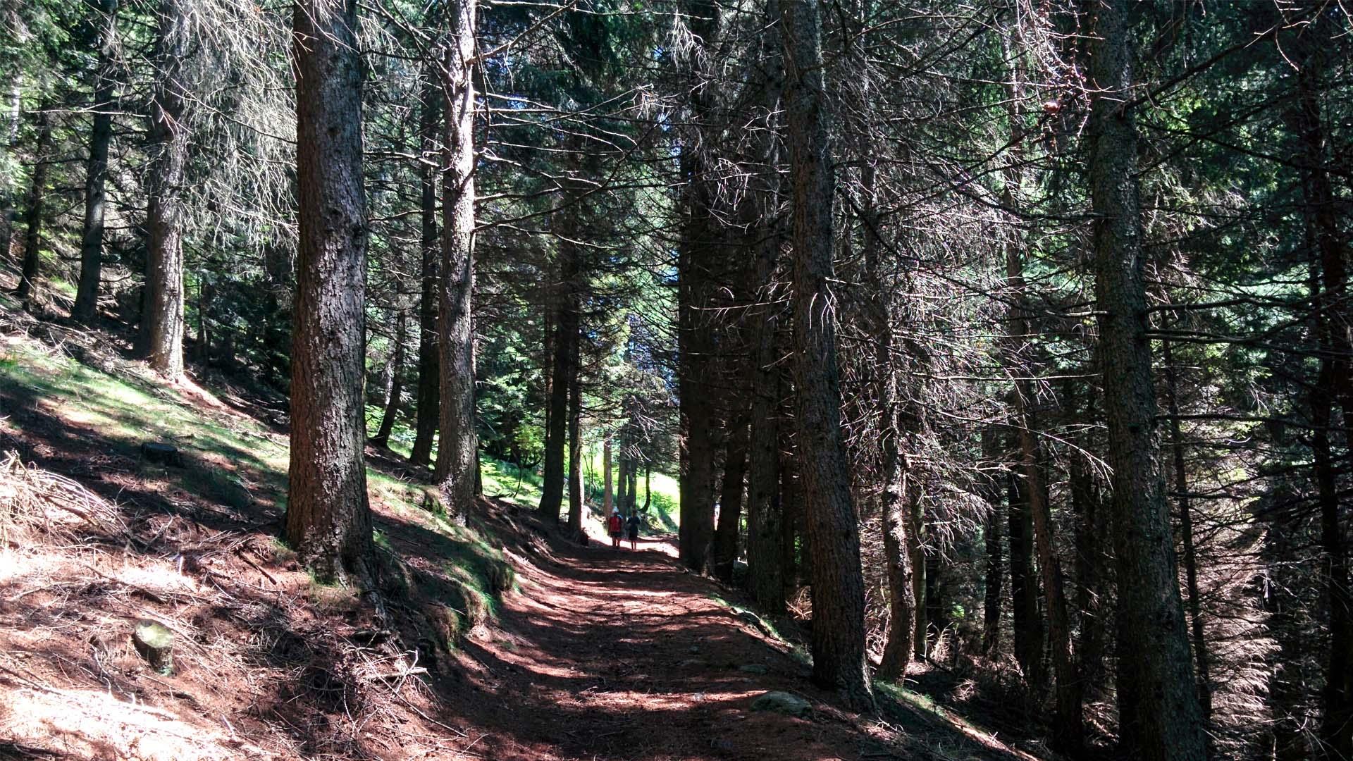 Valle Strona, itinerarium