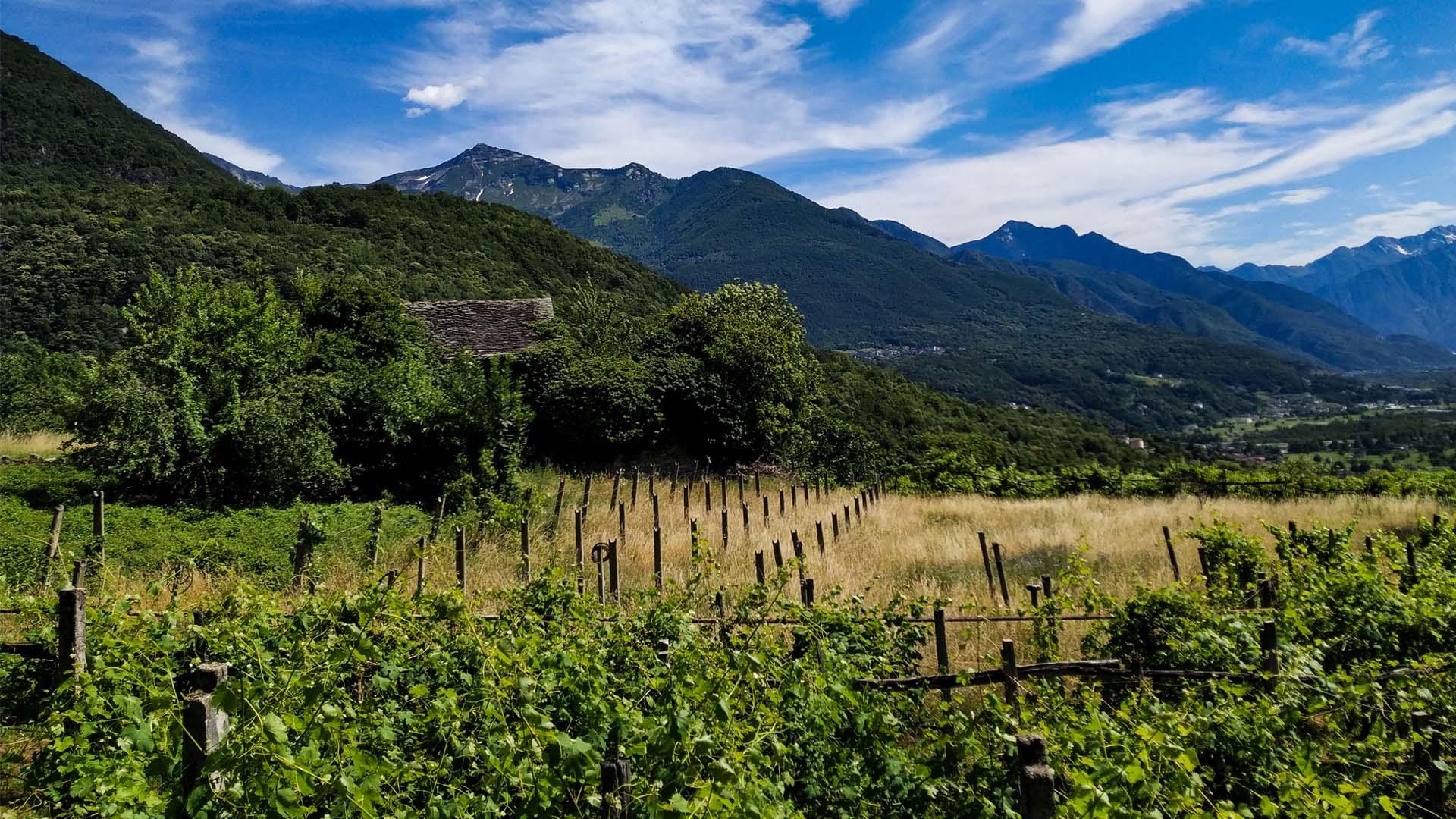 Val D'Ossola - Valle Isorno/Valle Agarina, itinerarium