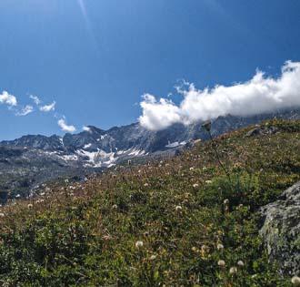 Rifugio Andolla e Alpe Camasco