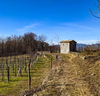 From Invorio to San Michele's vineyards - itinerarium