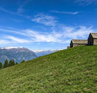 Da Trontano all'Alpe Noccola - itinerarium